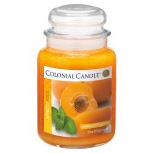 Apricot Mint Large Traditions Jar