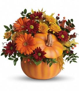country_pumpkin_sm.jpg