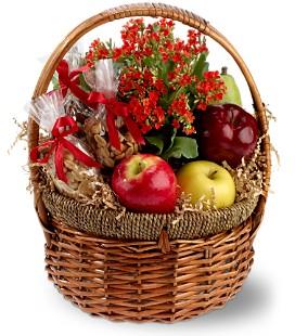 health nut basket sm.jpg
